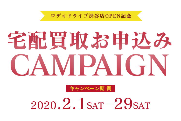 OPENING CAMPAIGN